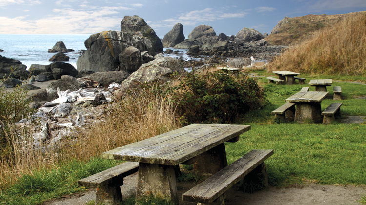 Lone-Ranch-Picnic-gold-beach-740