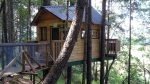 #52 – Vertical Horizons Tree House Paradise