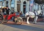 #44 - Horse-Drawn Carriage Rides