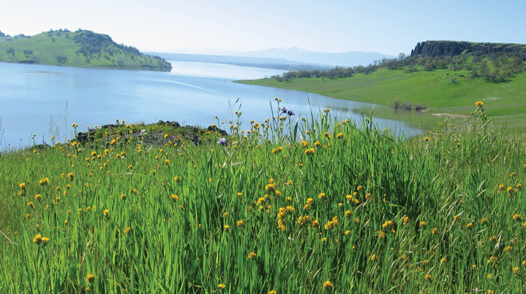 corning, tehama county, black butte lake , things to do