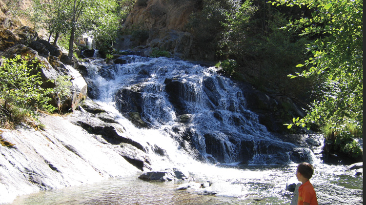 crystal creek waterfalls, whiskeytown, shasta things to do