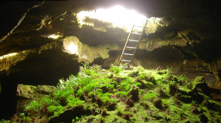 Fern-Cave-Lava-Beds-National-Monument