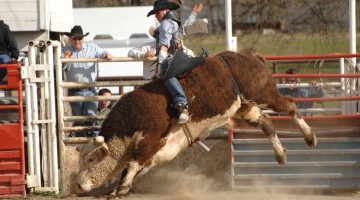 #22 – Red Bluff Round-Up & Museum