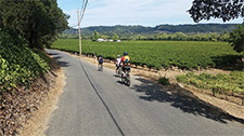 3-bikers-in-vineyard