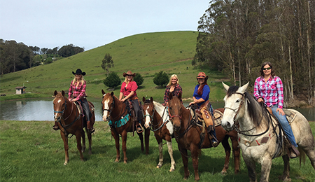 Ride a Horse on a Ranch or the Sonoma Coast