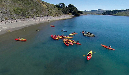 Take a Kayak EcoTour with WaterTreks – Year Round!