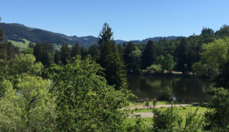 Sonoma County Parks Status Updates
