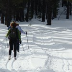 cross country skiing siskiyou county, things to do