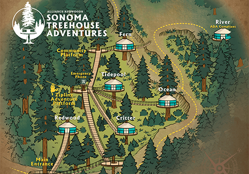 Zipline the Redwoods with Sonoma Canopy Tours… Day or Night!